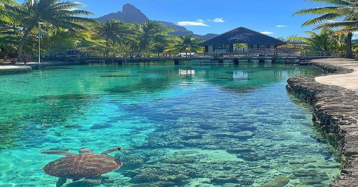 French Polynesia Landscape Romantic Travel Dream Vacations Bora Bora French Polynesia Honeymoon