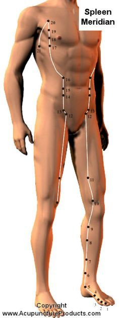Acupuncture Spleen Meridian