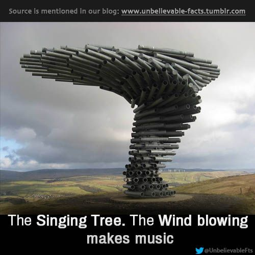 The wind, Unbelievable facts and Burnley on Pinterest