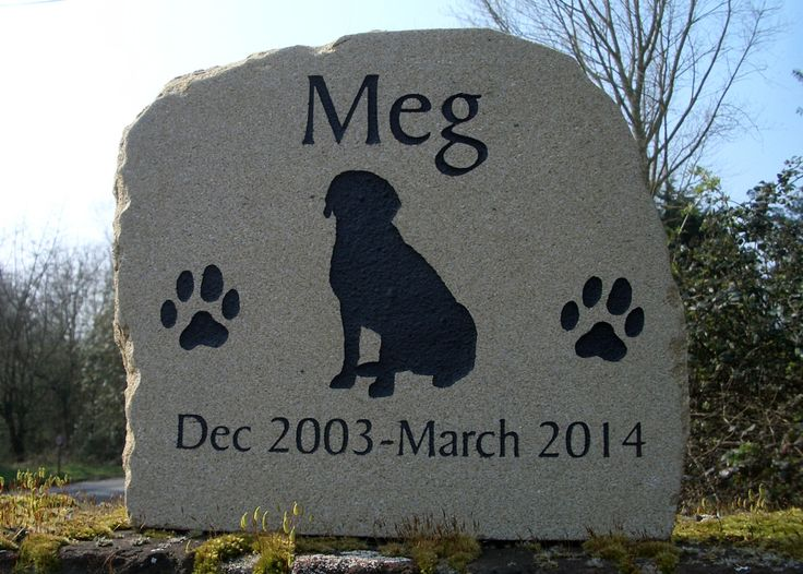 17 Best images about Pet loss products on Pinterest ...