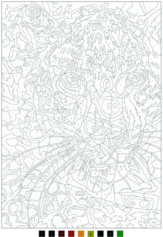 Coloriage Disney Tome 3.Coloriage Mystere Disney Tome 3 Inspirational Coloriages Mysteres
