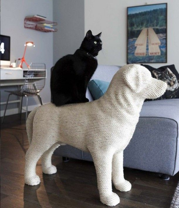 Must Have Cat House For Your Catty…..
