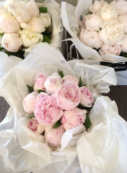 Bunches of peonies - love these flowrs - beautiful on a party table in May