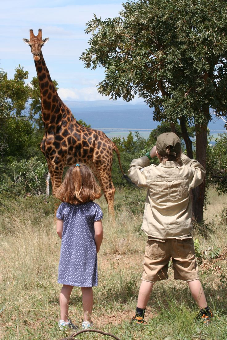 #Kids #Love #Wildlife #Safari #Family #Holiday  Book your family Safari holiday with us.