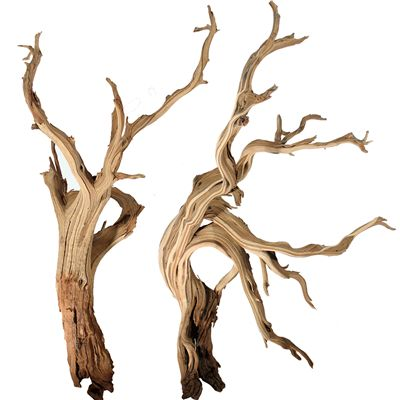 """Mountain Driftwood Branches, 10"""" up to 96"""""""