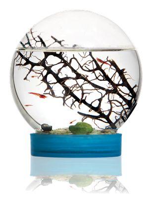 Økosystemet til dekoration. Læs mere på bloggen frubruun.dk og find forhandler m.m.