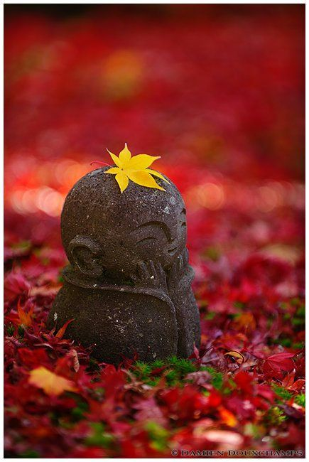 The return of the little Jizo (Enko-ji temple 圓光寺) | Flickr - Photo Sharing!