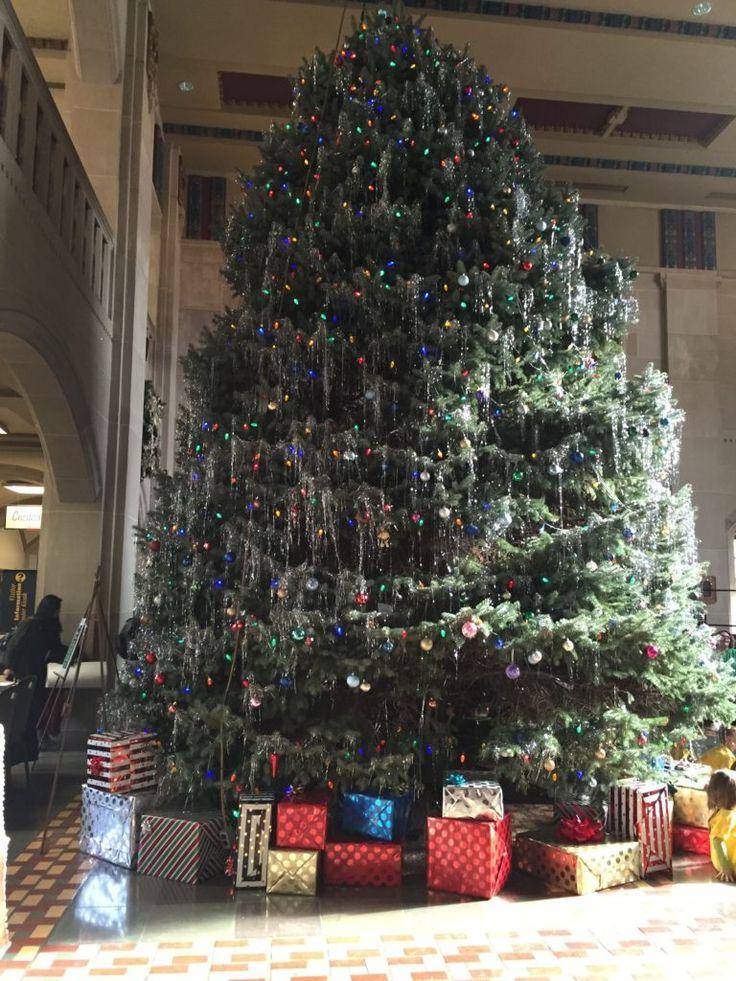 Purdue Christmas Tree 15 best Home of
