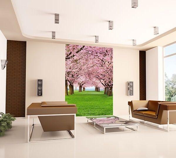 Decoración Fotomural Wizard Genius Cherry Trees 385, imagen de árboles cerezos florecidos con flores en diferentes tonos de rosa, encima de césped verde.