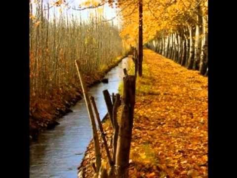 No es lo mismo el otoño en Mendoza
