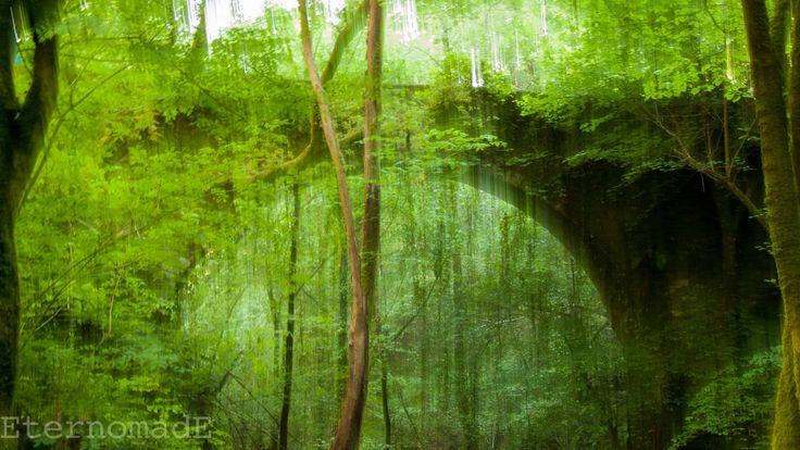 planta-byn-10.jpg (3264×1836)