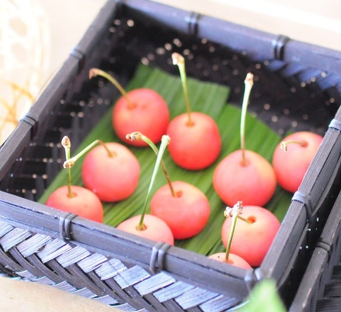 さくらんぼ Sakurambo - Cherry