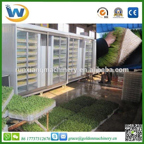 Automatic grass fodder making machine / hydroponic growing systems / Hydroponic fodder machine