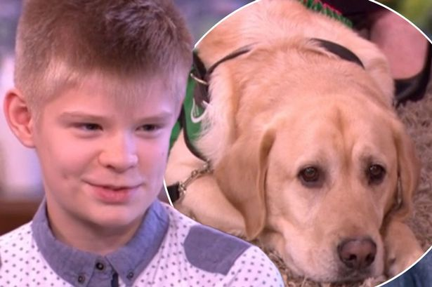 "This article showcases the life changing transformation that a young teenaged boy named Joel experienced when he was given his dog, Caddy. Joel, who has autism, was a shy boy who kept to himself, didn't smile, wouldn't leave the house, and as a result, probably didn't have many or any friends. Referring to Caddy as his ""Guardian Angel"" dog, Joel talks about just how happy he is to have her in his life as his best friend."