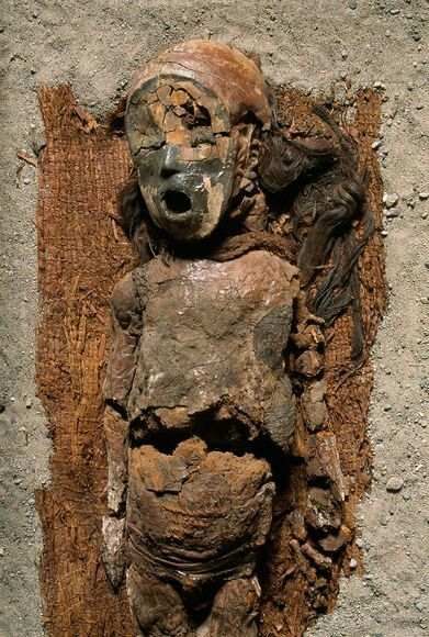 """Chinchorro's complex mummification.  Rather than preserving flesh, the desert people used a paste of manganese-infused ash to sculpt """"bodies"""" atop defleshed skeletons, whose internal organs had been replaced with earth."""