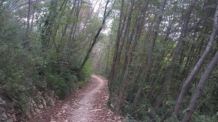 Un sentiero per la dura scalata al monte Orbieso
