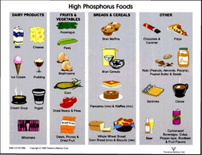 Dialysis Diet-High Phos Foods