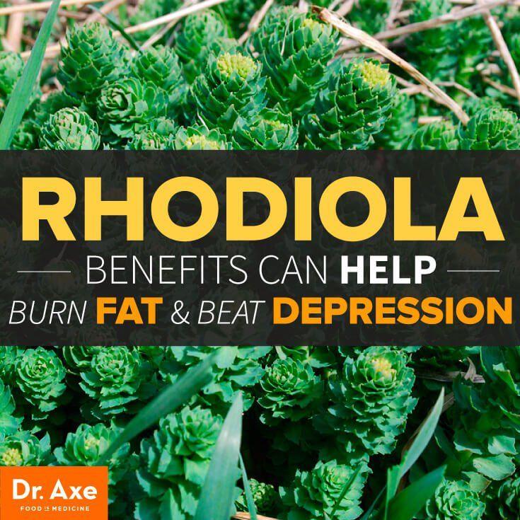 Rhodiola Benefits: Burning Fat & Beating Depression - DrAxe.com