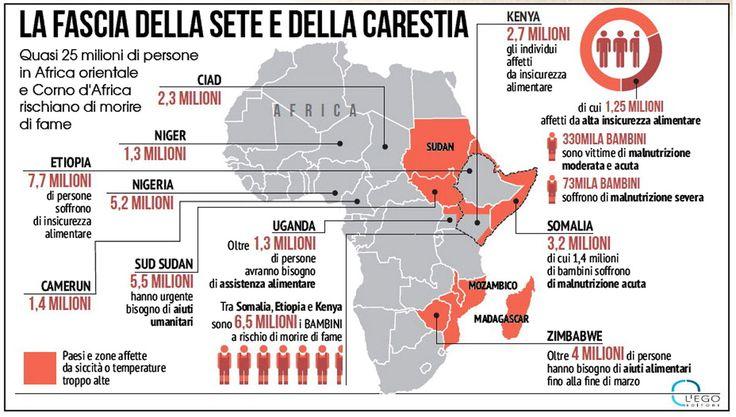 Nel Ciad, Camerun, Niger e Nigeria oltre sette milioni di persone non hanno cibo, gran parte del bestiame  è morto e l'accesso all'acqua è un lusso