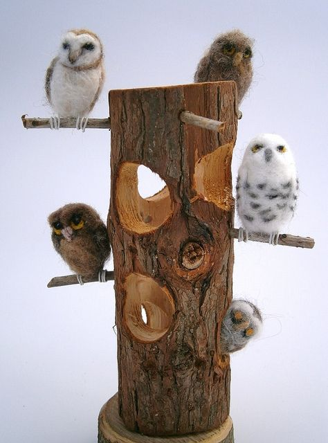 """Owl Hooootel