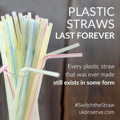 Understanding how the lifecycle of plastic straws impacts you is just as important as understanding the impact they have on the environment.