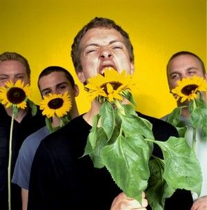 Coldplay with sunflowers.