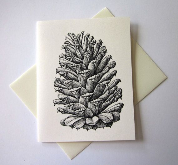 Pine Cone Note Cards Stationery Set of 10 Cards by PetitePaperie, $10.00