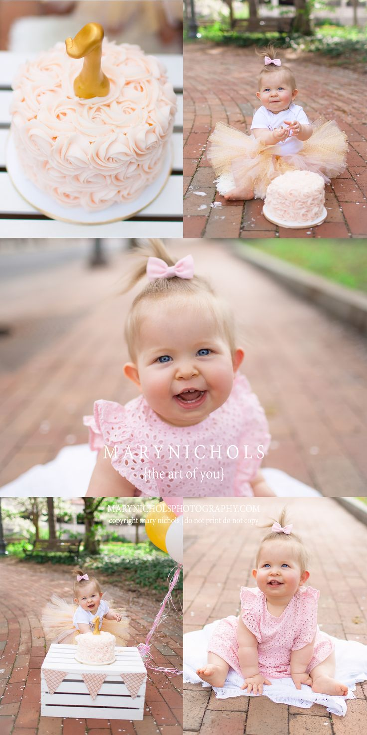 First Birthday Photo Shoot Idea Ideas Pink Party Frosting