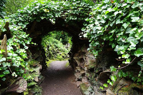 stumperyGardens Favorite, Gardens Ideas, Ideas Stumpery, Secret Gardens, Galago Gardens, Stumpery Arches, Dreams Gardens