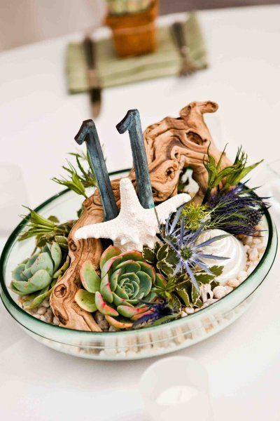 Table number & centerpiece in one with driftwood, starfish & succulents.