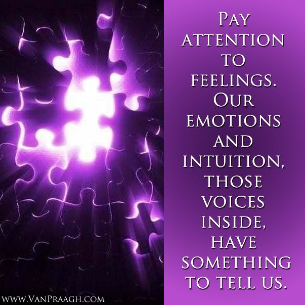 Pay attention to feelings. Our emotions and intuition, those voices inside, have something to tell us. ~ James Van Praagh