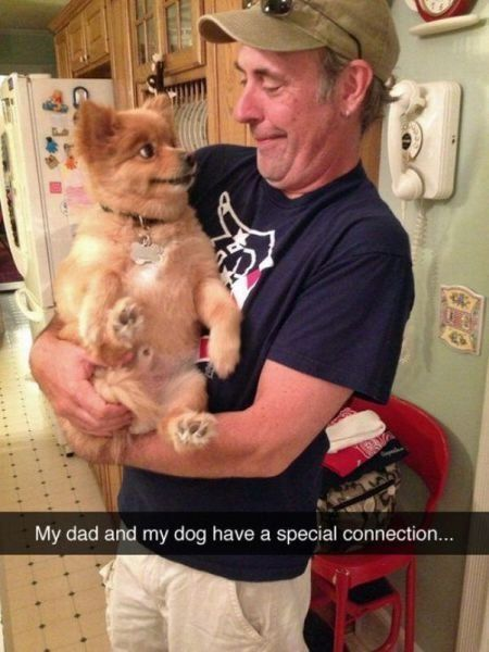 40 Hilarious Animal Pictures That Are Priceless -Anais C.