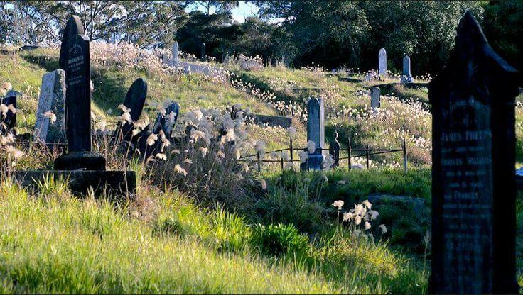 Beautiful Waikumete cemetery. Auckland, New Zealand.