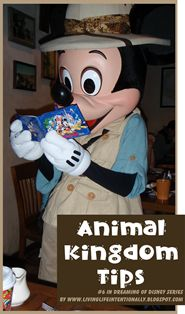 Animal Kingdom Visit Tips - 6th in Dreaming of Disney series about a Disneyworld, FL vacation.