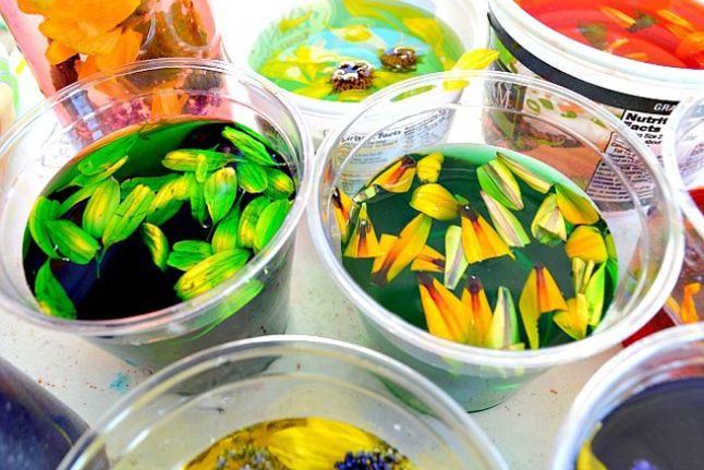 Flower Potions - http://www.pbs.org/parents/crafts-for-kids/flower-potions/