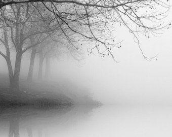 zwart-wit fotografie, landschapsfotografie, natuurfotografie, bomen in de mist, boom fotografie, winter landschapsfotografie