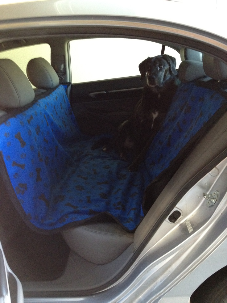 best 25 dog hammock ideas on pinterest hammock bed survival hammock and dog hammock for car. Black Bedroom Furniture Sets. Home Design Ideas