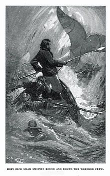 Google Image Result for http://cdn.americanliterature.com/Images/misc/moby_dick_final_chase.jpg