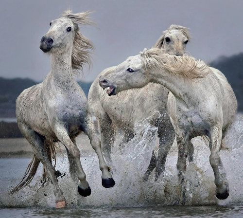 Move Over.... by Paul Keates