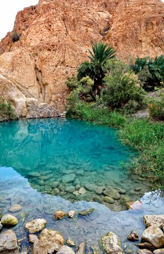 Paradise on earth - Chebika Oasis, Tunisia. The 10 Most Beautiful Towns in Tunisia on TheCultureTrip.com Click the image to find some beautiful places you have to visit in Tunisia. (Image via traveler.es)