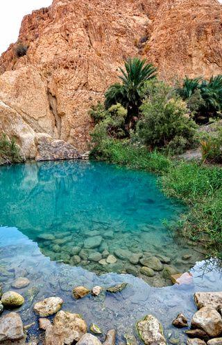 Oasis Chebika, Tunisie. Eau limpide, paysages vierges, la sérénité règne en ces lieux. Je conseille vivement la Tunisie du Sud pour les amateurs de paysages et de marche. ✅