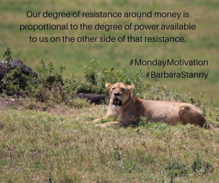 "This gives me butterflies!   ""Our degree of resistance around money is proportional to the degree of power available to us on the other side of that resistance.""  #MondayMotivation #BarbaraStanny"