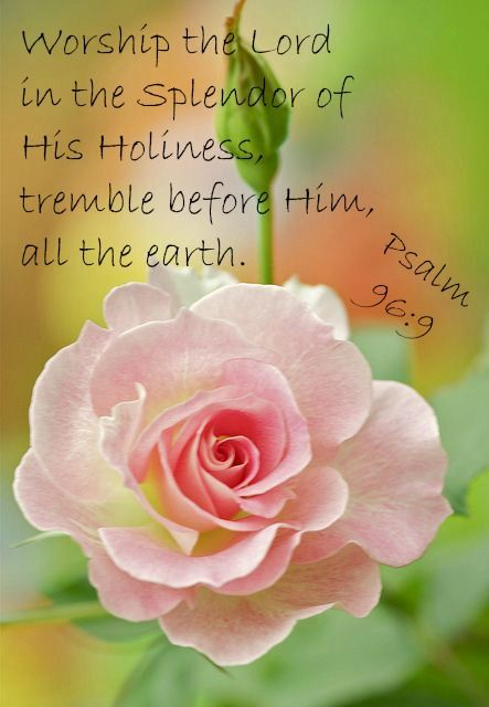 """""""Oh, worship the LORD in the beauty of holiness! Tremble before Him, all the earth."""" Psalms 96:9 NKJV"""