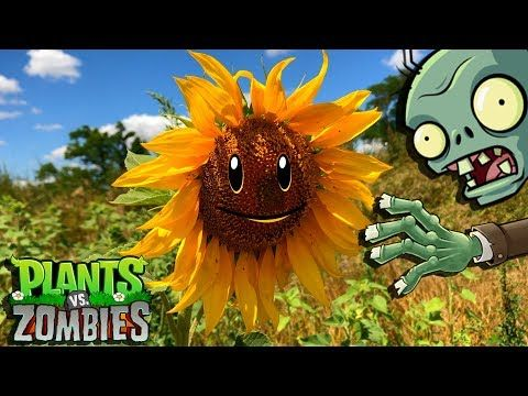 Zombie Apocalypse Зомби Апокалипсис продолжение ВОЙНА за Выживание War Plants vs Zombies - YouTube
