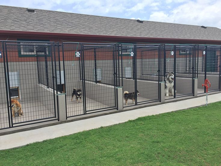 ATTABOY Boarding Kennels Facility