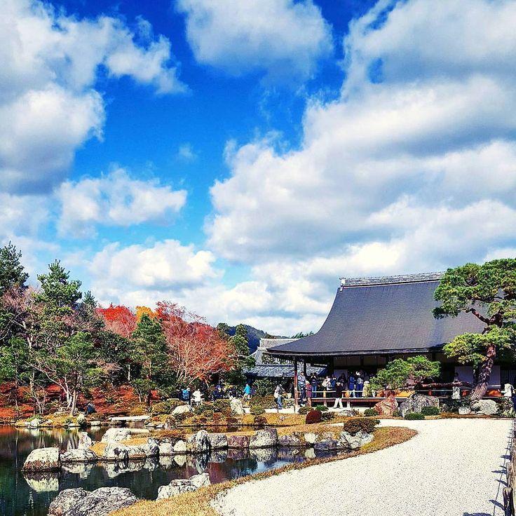 京都日帰りの旅⑩ 曹源池庭園です。 お天気が良くて本当に感謝でした☀ 空も庭園も美しいです❤ * * * #京都#紅葉#嵐山#天龍寺 #はなまっぷ #ファインダー越しの私の世界#写真好きな人と繋がりたい#temple #kyoto#landscape #IGersJP#lovers_nippon #ig_japan #tokyocameraclub #japan_daytime_view#bns_japan#東京カメラ部 #p10_select#jal東京カメラ部2017旅 #japan_of_insta#myheartinshots #lovers_flowers_#wp_flower#s_shot#tv_clouds #art_of_japan_#bestjapanpics#team_jp_#icu_japan #autumnleaves