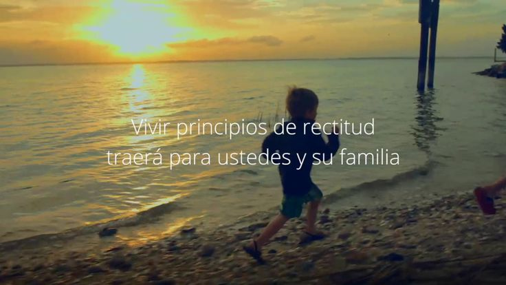 Vivir Principios De Rectitud https://www.youtube.com/channel/UC54yXWAB56qaqVH-3t2mehQ