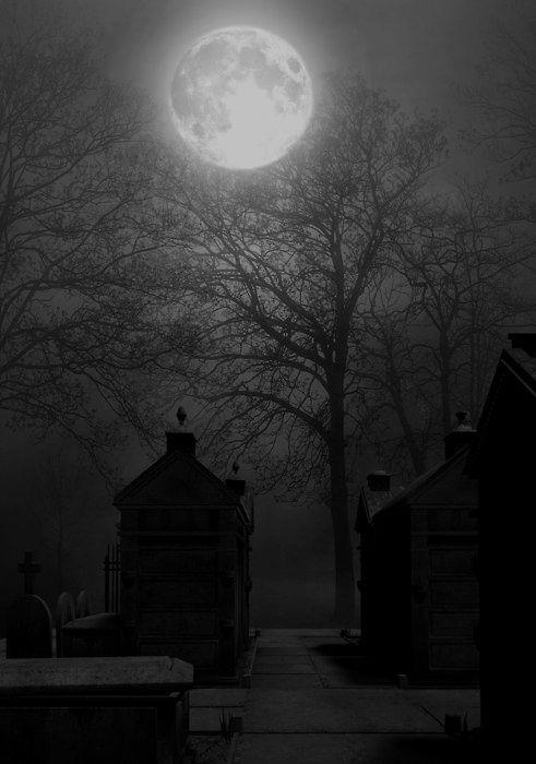 Moon and the Graveyard. Black and White Photography.