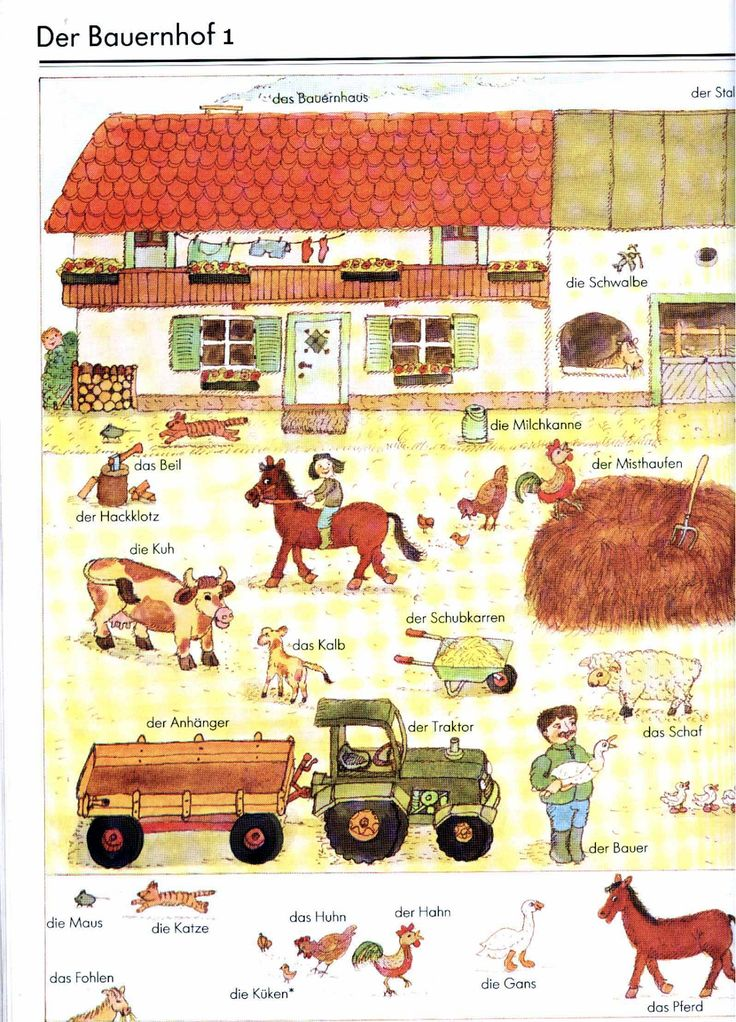 German For Beginners: the farm