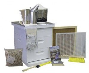 Bee Hive - Premium Bee Hive Starter Kit (Fully Assembled - Wood) with Beekeeping Supplies - Perfect Hives for Beginners and Pro Beekeepers - Beekeeper Kits for Honey Bees, Easy-to-lift Wood Beehives, Quality Beehive Equipment - Boxes, Frames, Smoker, Fuel, Veil, Gloves